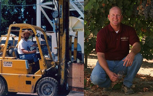 Bogle Family Tree: Meet Chris Smith, Bogle Director of Wine Growing