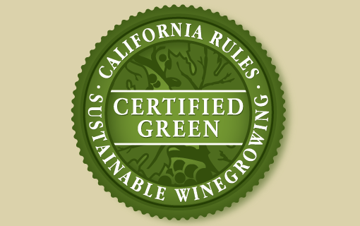 Following the Rules: Exciting Changes to our Sustainability Practices