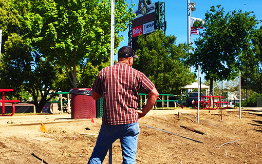 Take Us Out to the Ballgame: Partnering with the Sacramento River Cats