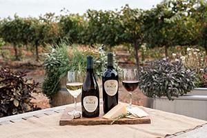 Chardonnay and Merlot