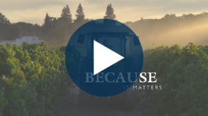 Bogle Sustainability Video March 2019